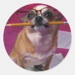 Chihuahua con el lápiz etiqueta redonda