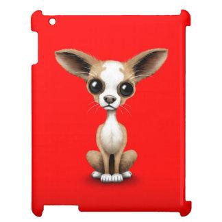 Chihuahua curiosa linda con los oídos grandes en r