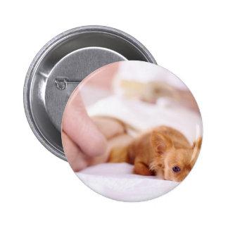Chihuahua de Chimi vigilante Pin