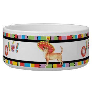 Chihuahua de la fiesta comedero para mascota