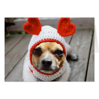 Chihuahua de la tarjeta del día de San Valentín