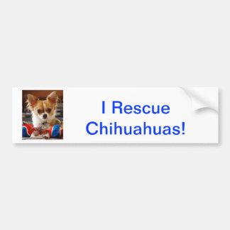 Chihuahua de pelo largo etiqueta de parachoque