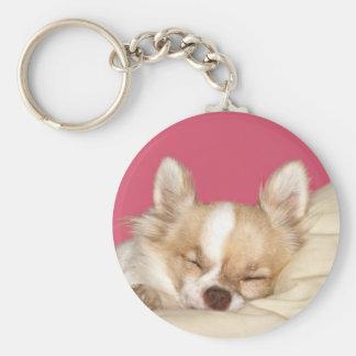 Chihuahua de pelo largo llavero redondo tipo pin