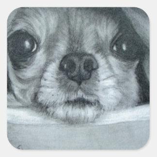 Chihuahua debajo de las ilustraciones originales calcomanías cuadradass