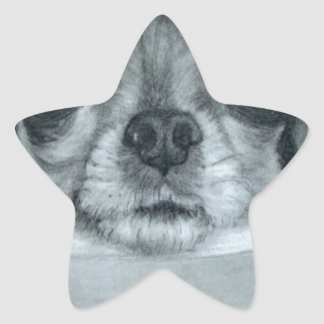 Chihuahua debajo de las ilustraciones originales calcomanías forma de estrellas personalizadas