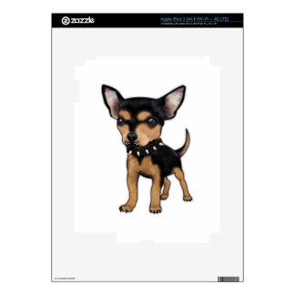 Chihuahua del asesino iPad 3 pegatinas skins
