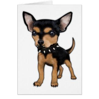 Chihuahua del asesino tarjetón