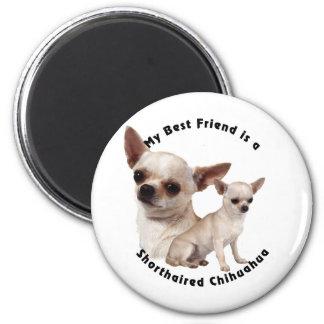 Chihuahua del mejor amigo de pelo corto imán redondo 5 cm