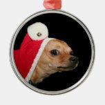 Chihuahua del navidad ornatos