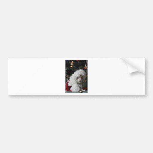 Chihuahua del navidad pegatina para auto