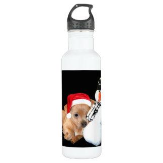 Chihuahua del navidad