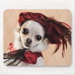 Chihuahua del renacimiento en terciopelo rojo alfombrilla de ratones