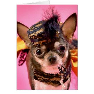 Chihuahua Diva Card