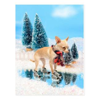 Chihuahua divertida con la bufanda y los patines tarjetas postales