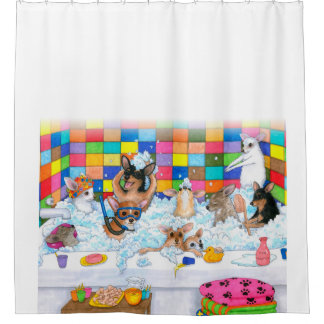 Chihuahua divertida del perro 121 en baño cortina de baño