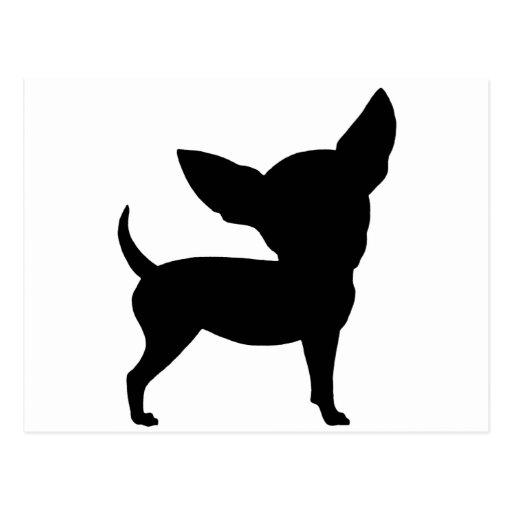 Chihuahua divertida tarjetas postales