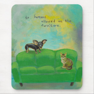 Chihuahua dog and cat on sofa fun original art mouse pad