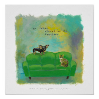 Chihuahua dog and cat on sofa fun original art posters