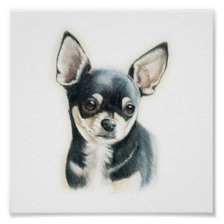 Chihuahua Dog Art Print print