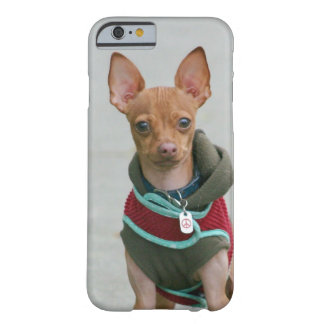 Chihuahua dog barely there iPhone 6 case