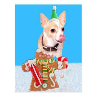 chihuahua dog eating gingerbread man postcard