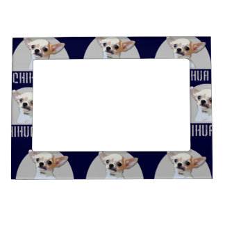 Chihuahua Dog Frame Magnets