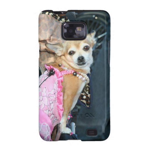 Chihuahua dog galaxy SII cover