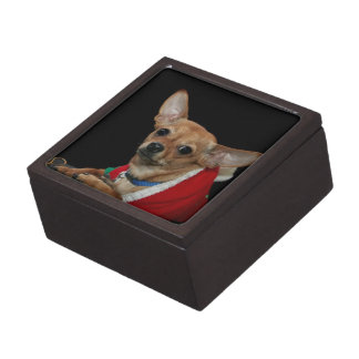 Chihuahua dog gift box premium trinket box