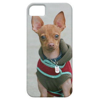 Chihuahua dog iPhone SE/5/5s case