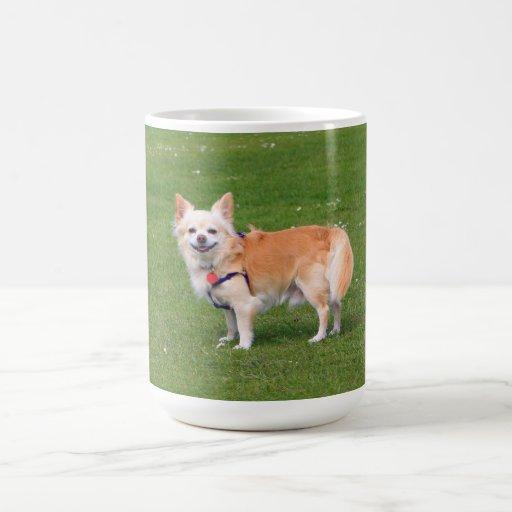 Chihuahua dog long-haired happy beautiful photo mug
