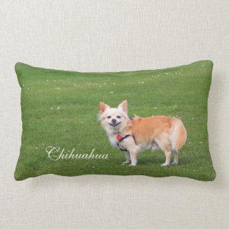 Chihuahua dog long-haired photo cushion pillow