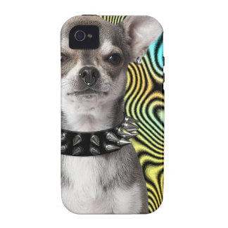 R Chihuahuas Smart Chihuahua Dog Looking Cool