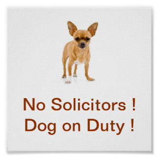 Chihuahua Dog No Solicitors Sign Dog on Duty Poster