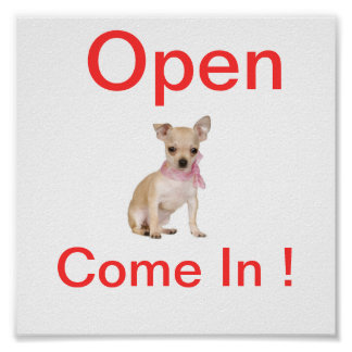 Chihuahua Dog Open Sign Poster