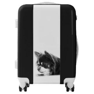 Chihuahua Dog Portrait Luggage
