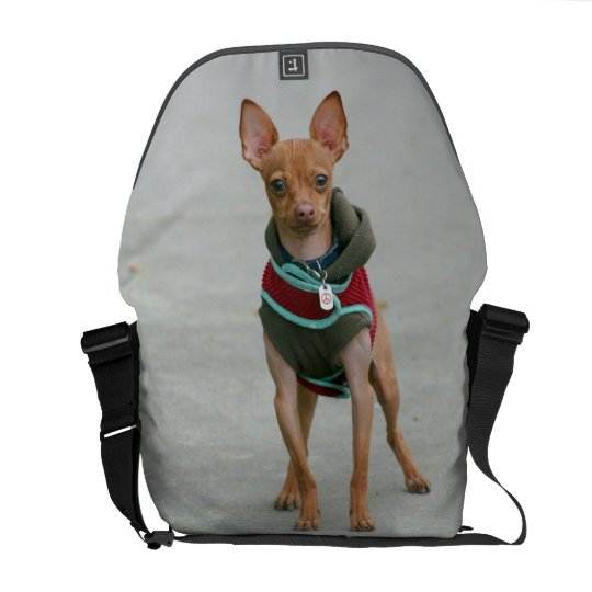 Chihuahua dog rickshaw messenger bag
