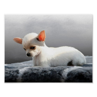 Chihuahua Dog Sitting Dog Portrait Art Painting Poster