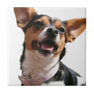 Chihuahua Dog Tile