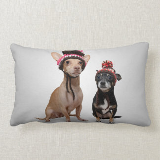 Chihuahua Dogs With Hats Photo Lumbar Pillow