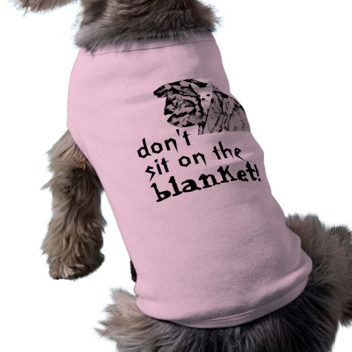 chihuahua, don't, blanket!, sit on the pet shirt