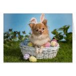Chihuahua Easter Bunny Card Greeting Card
