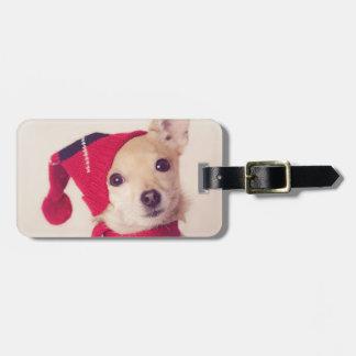 Chihuahua en casquillo del invierno etiqueta de maleta