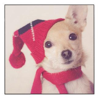 Chihuahua en casquillo del invierno impresión en madera