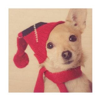 Chihuahua en casquillo del invierno impresiones en madera