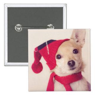 Chihuahua en casquillo del invierno pin cuadrado
