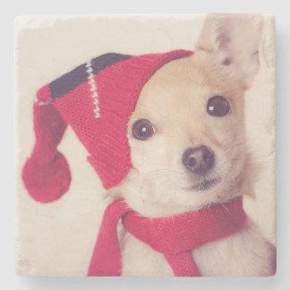 Chihuahua en casquillo del invierno posavasos de piedra