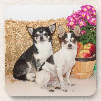 Chihuahua en la caída posavaso