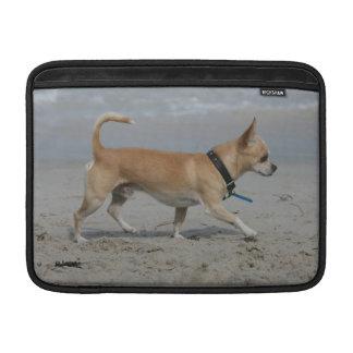 Chihuahua en la playa funda macbook air
