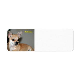 Chihuahua Etiqueta De Remitente