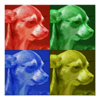 Chihuahua Four Color Pop Art Poster